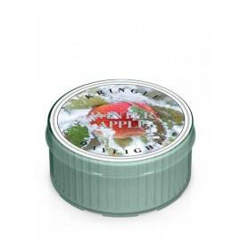 COUNTRY CANDLE ŚWIECA 35G WINTER APPLE